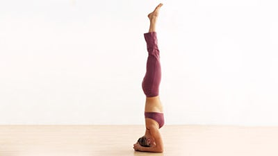face fear and learn key inversions  inverted yoga poses