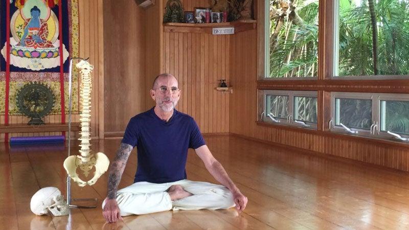 Vinyasa 101: The Power of Precise Alignment