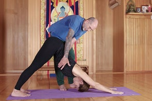 Seane Corn: Safe Vinyasa Yoga + Getting the Fundamentals Right