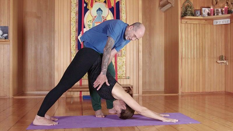 Seane Corn: Safe Vinyasa Yoga + Getting the Fundamentals Right