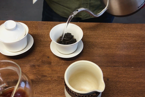 Live Be Yoga: Behind the Scenes with Rishi Tea