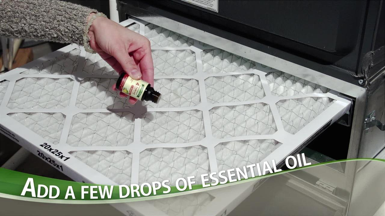 How to Freshen Your Home Air with Essential Oils