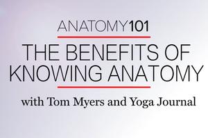 Anatomy 101: Why Anatomy Training is Essential for Yoga Teachers
