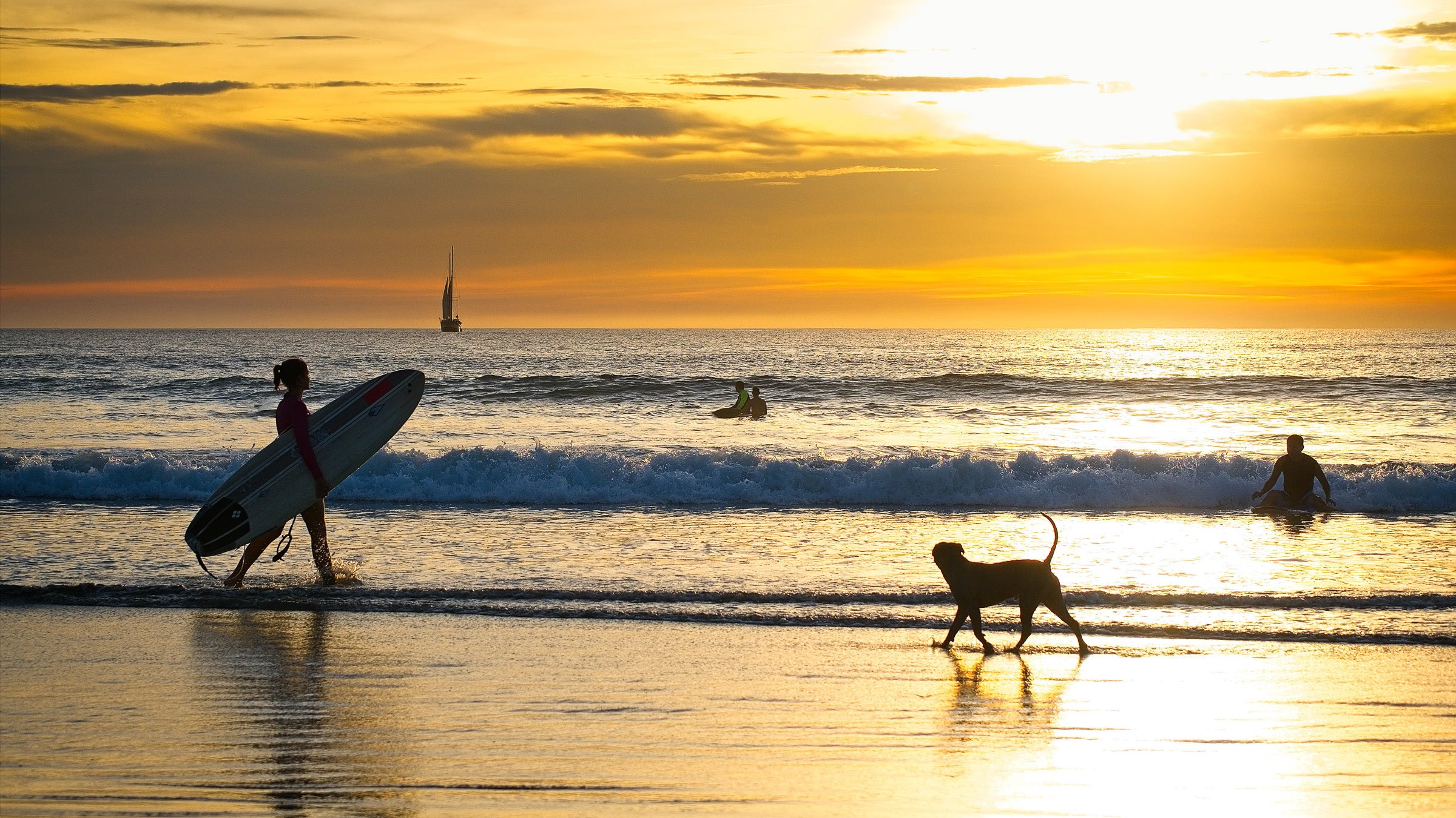 Surfer and a dog on Costa Rican beach at sunset